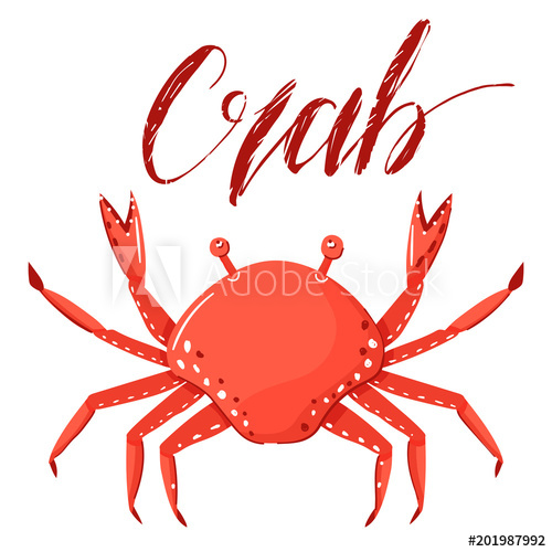Vector illustration of a crab isolated on white background