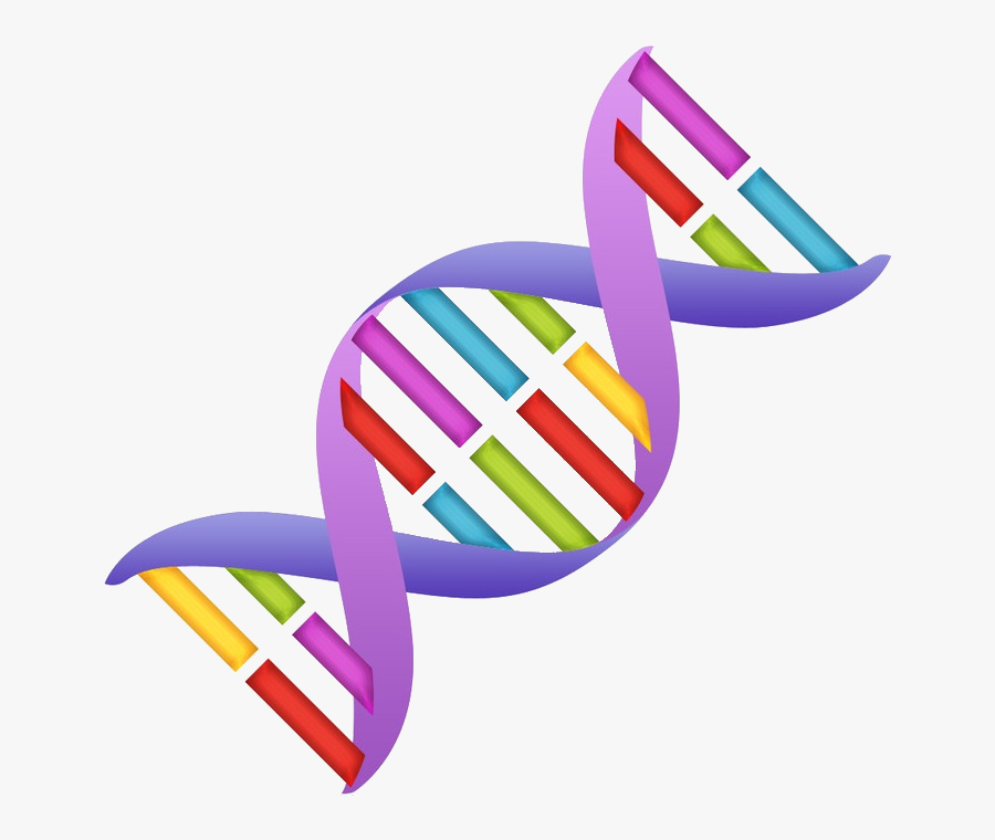 Clipart dna life science pictures on Cliparts Pub 2020!
