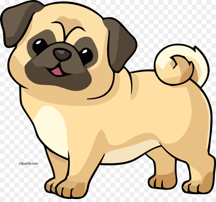 Dog Pug PNG Pug Puppy Clipart download
