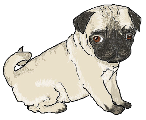 Free Pug Cliparts, Download Free Clip Art, Free Clip Art on