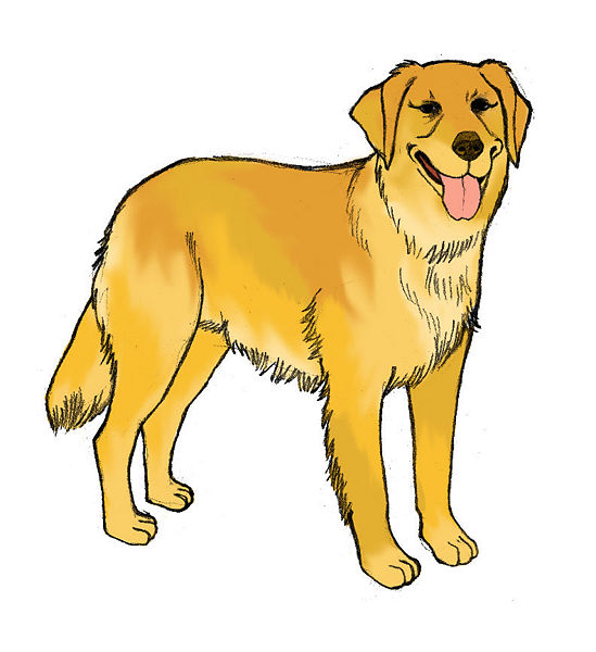 Realistic dog clipart.