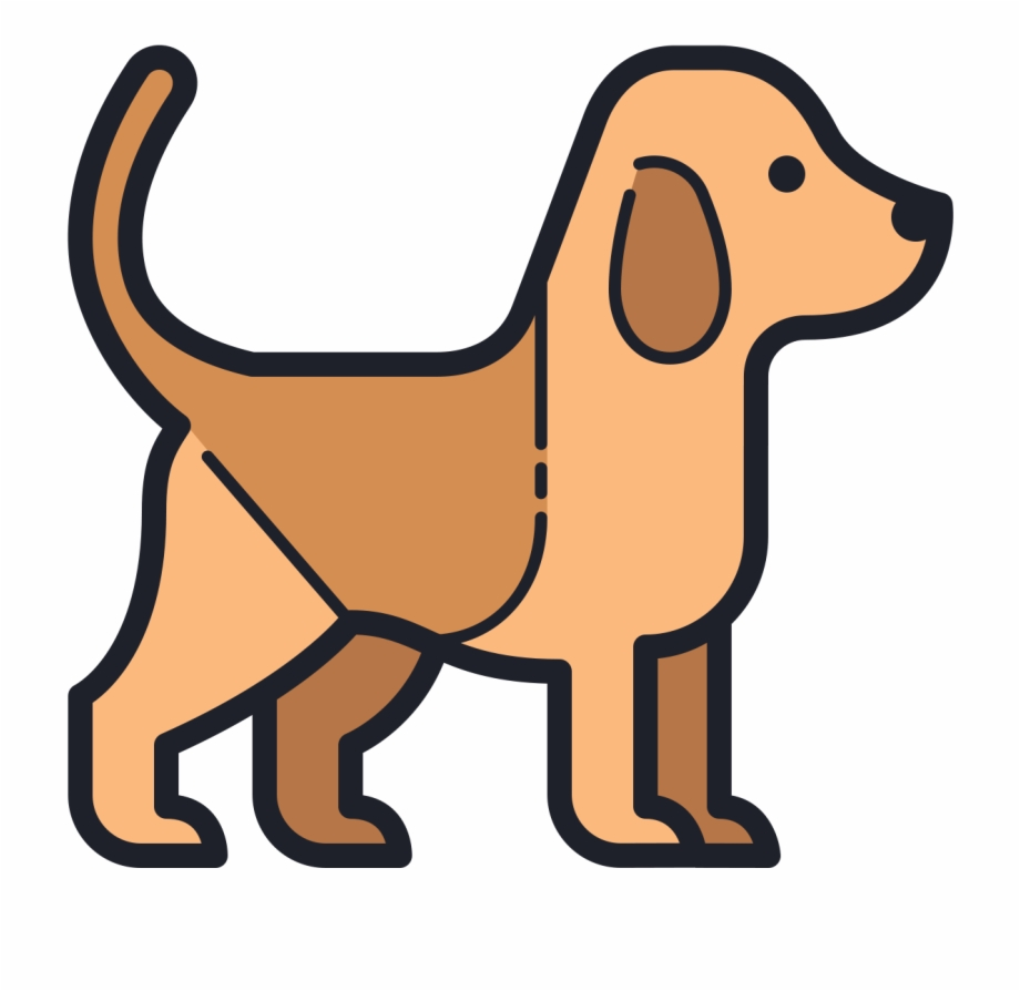 Dogs vector infographic.