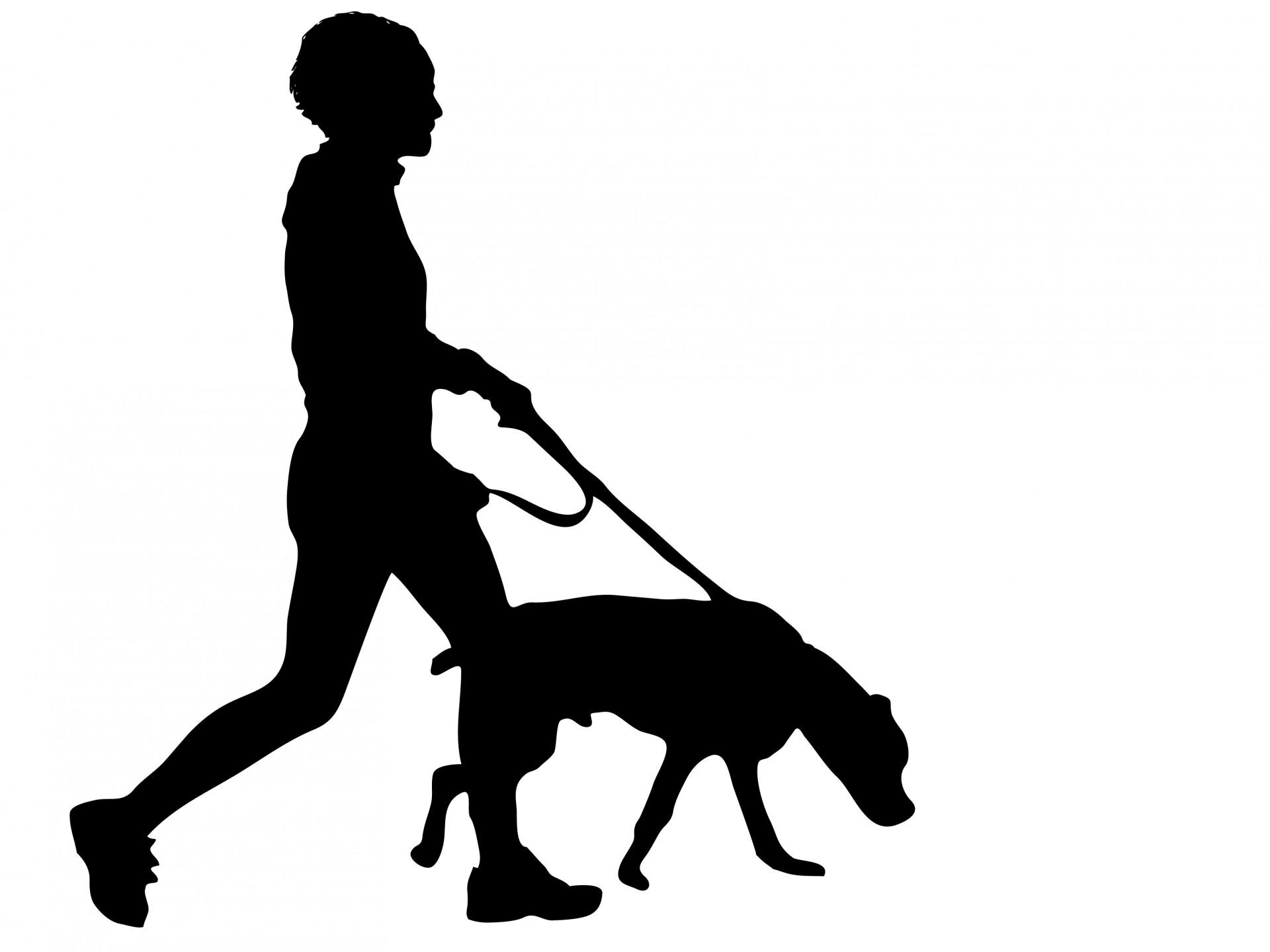 61 dog walking.