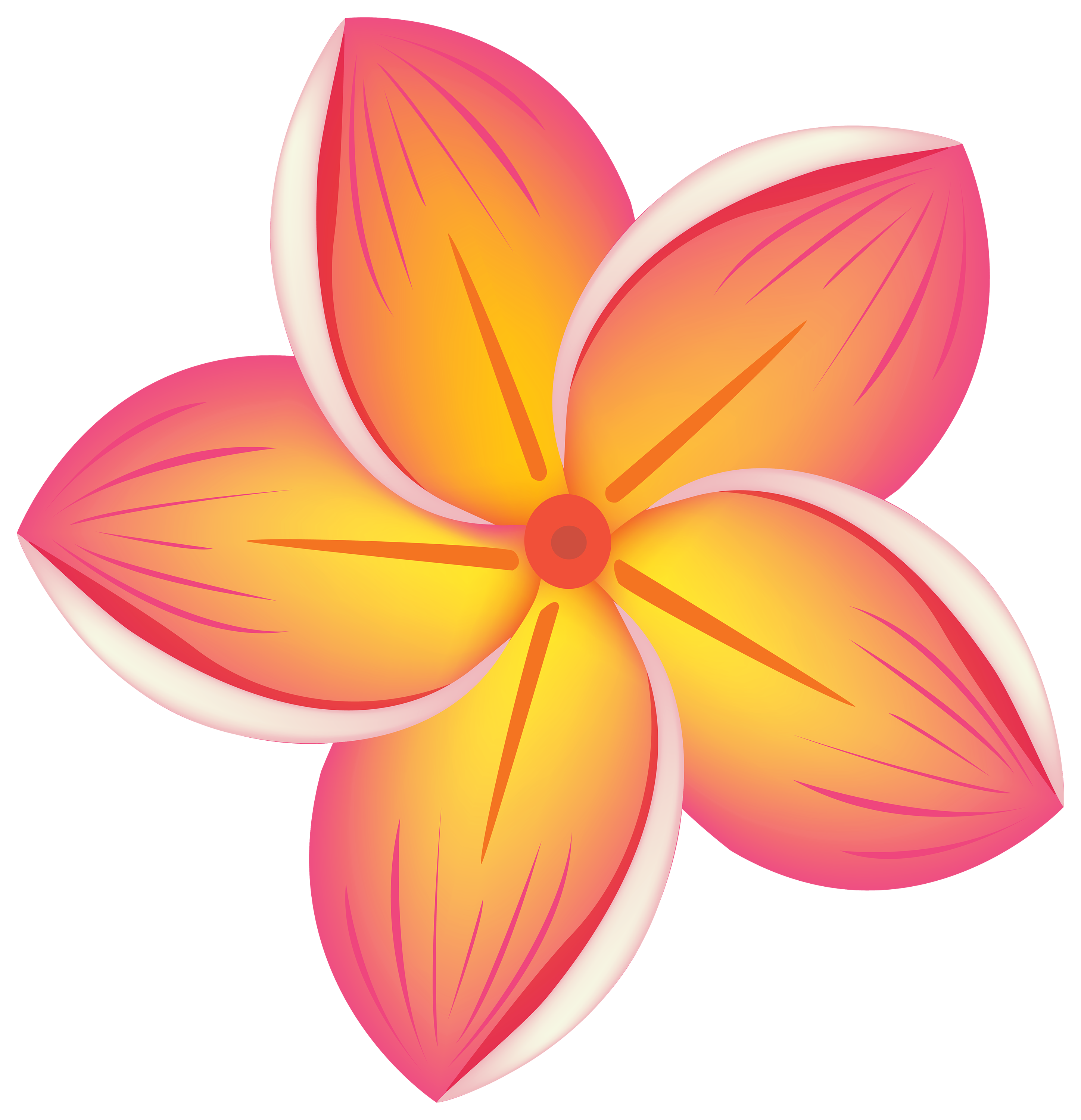 Tropical flower png.