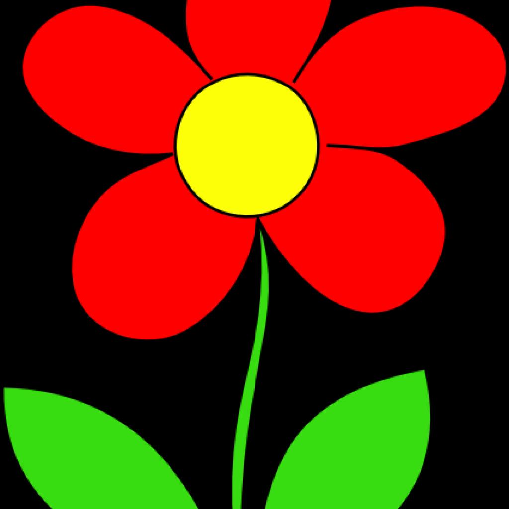 Red flower clip.