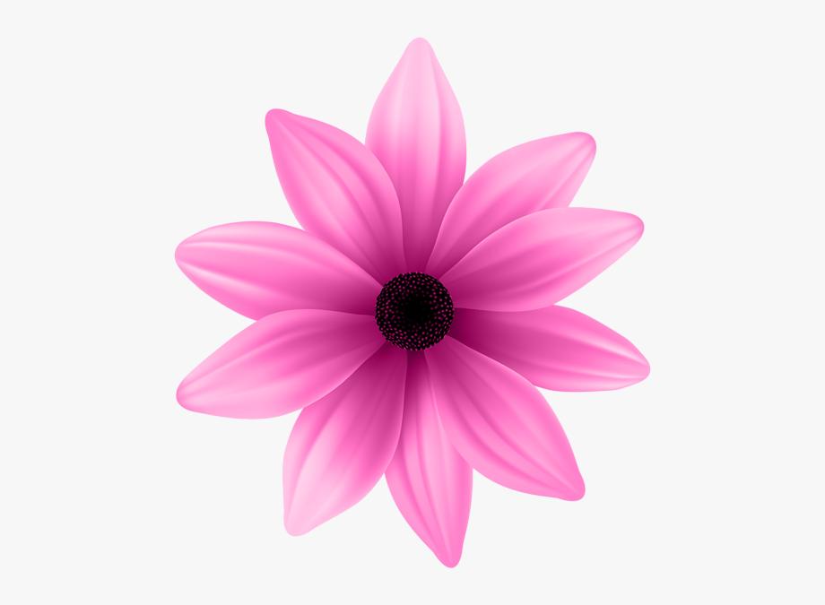 Flower Clipart, Vintage Flowers, Pink Flowers, Art