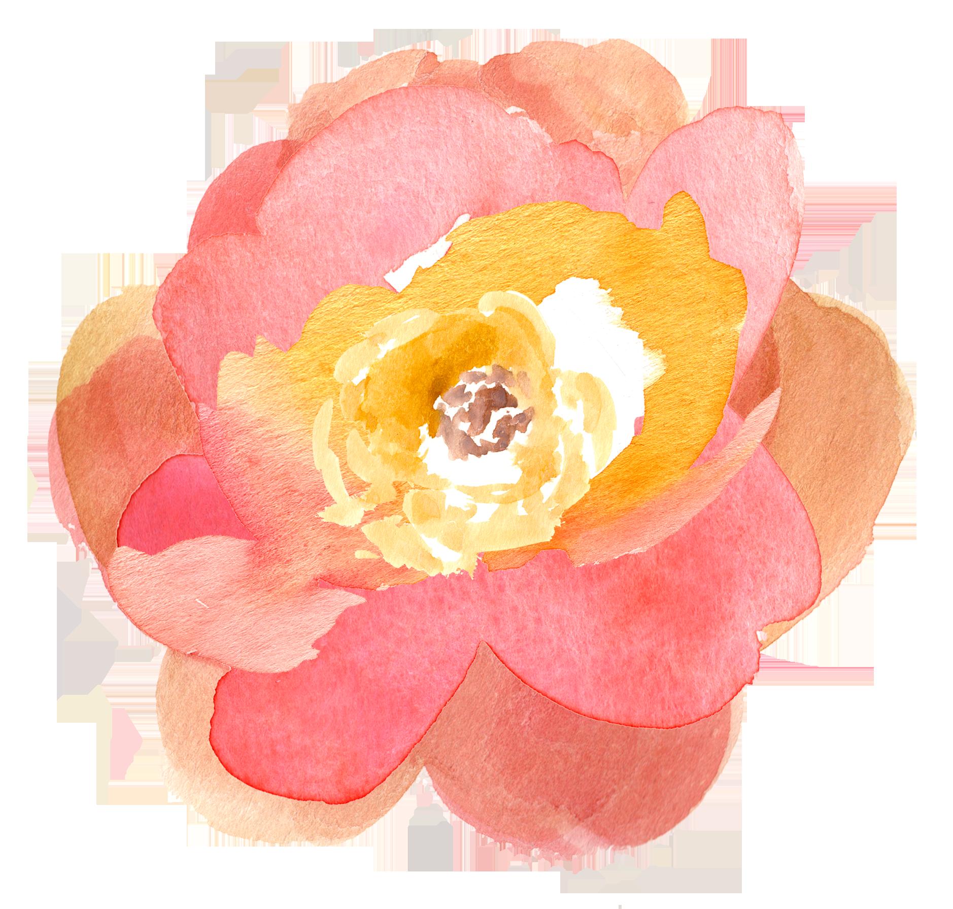 Flower clipart pretty.