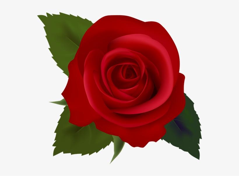 Clipart Flower Rose
