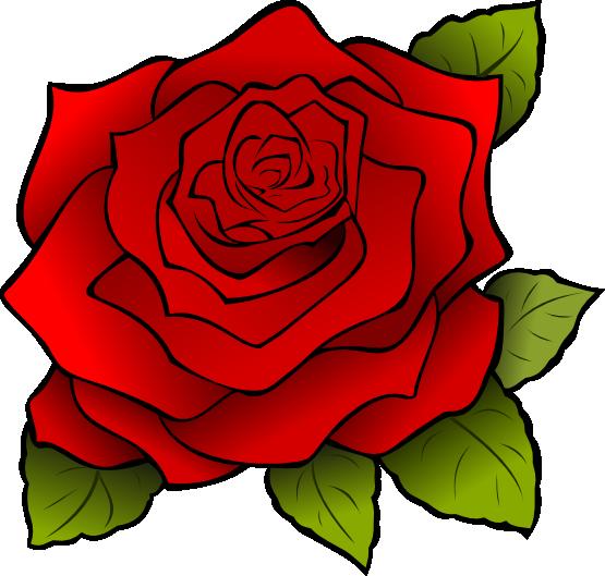 Free Free Rose Images, Download Free Clip Art, Free Clip Art
