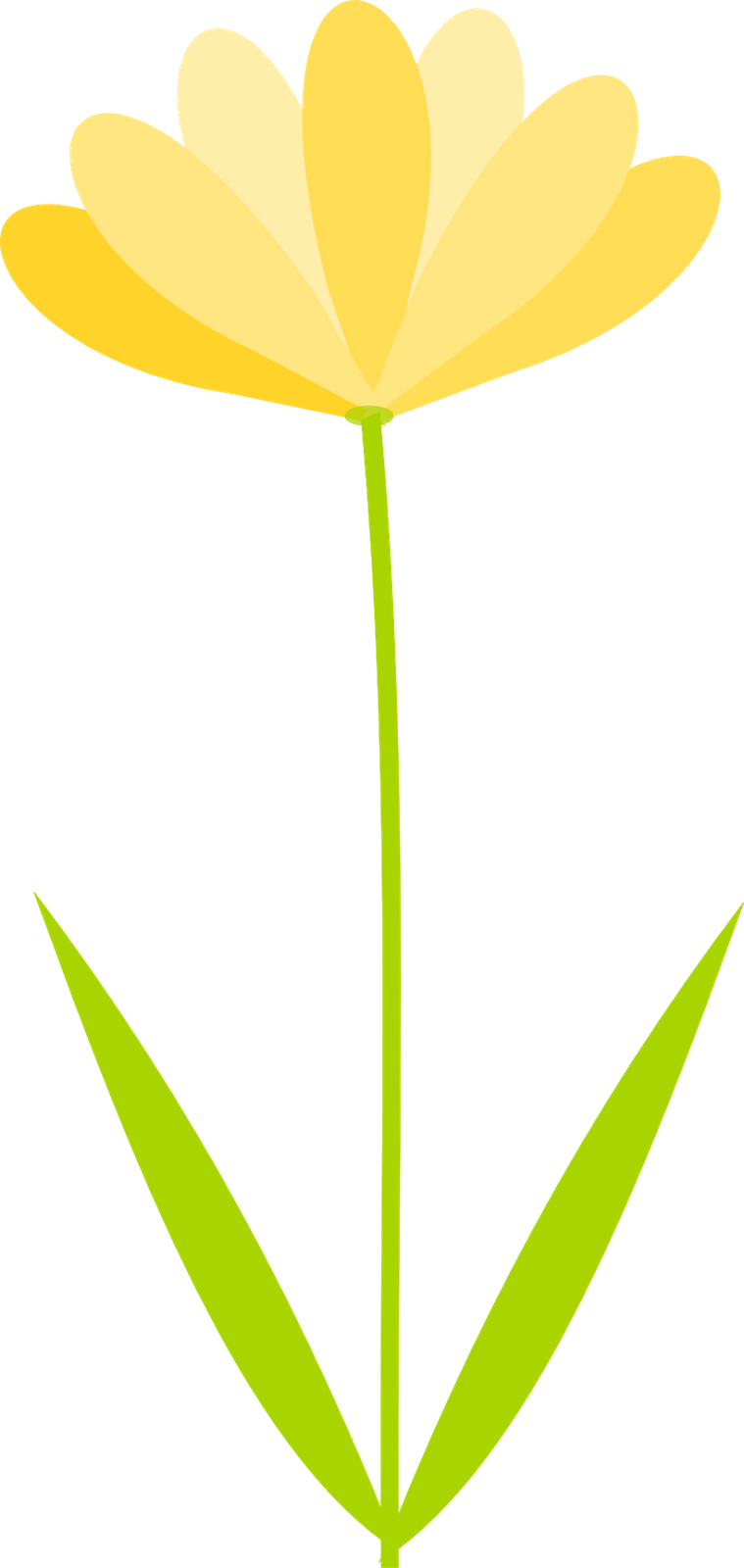 Clipart flowers transparent.