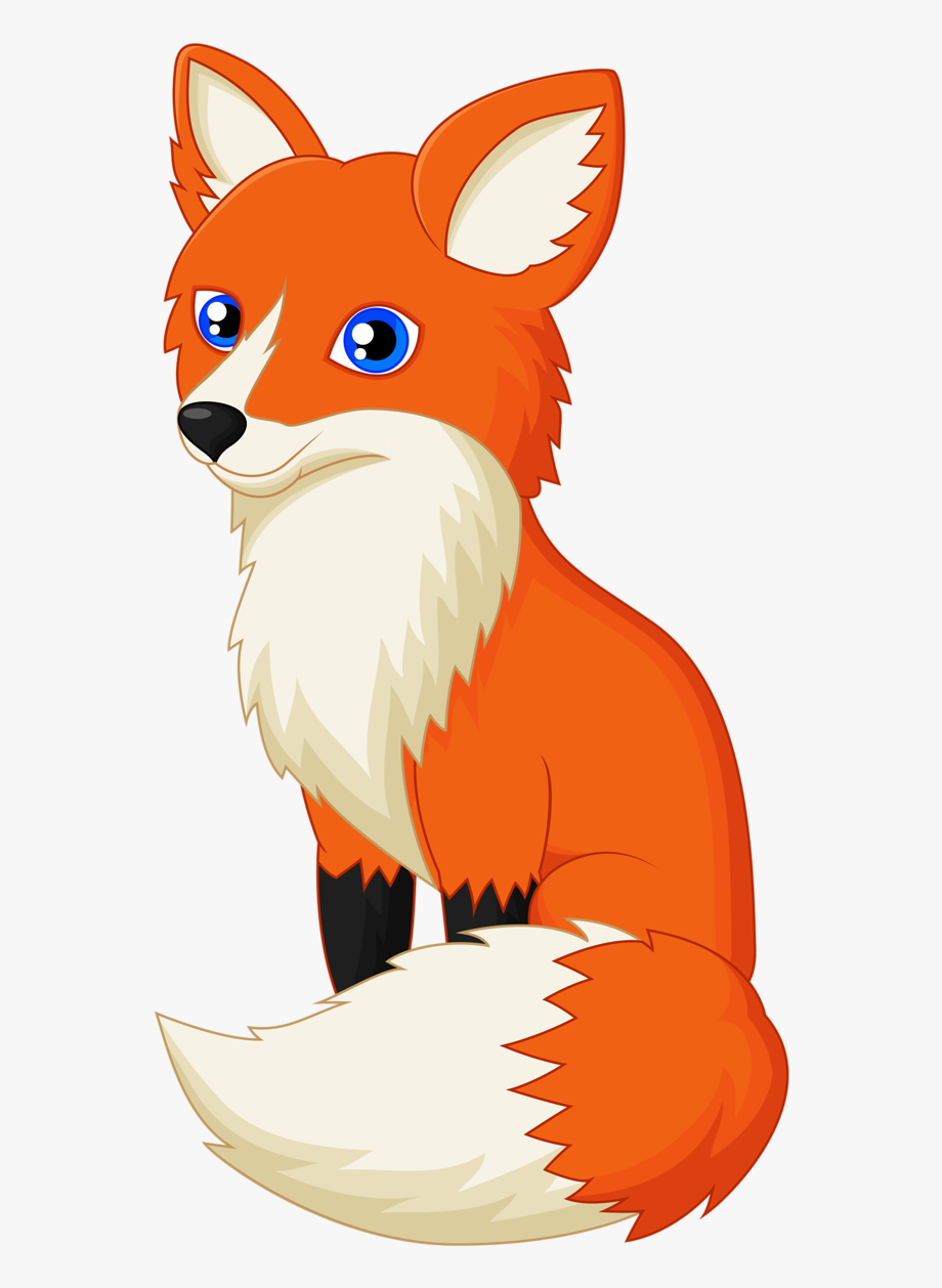Drawing red fox.