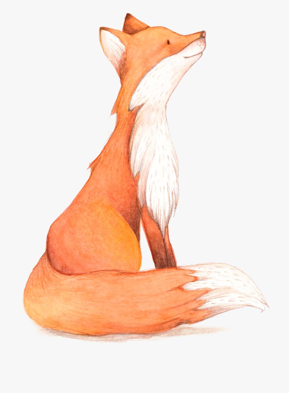 Birthday fox cartoon.