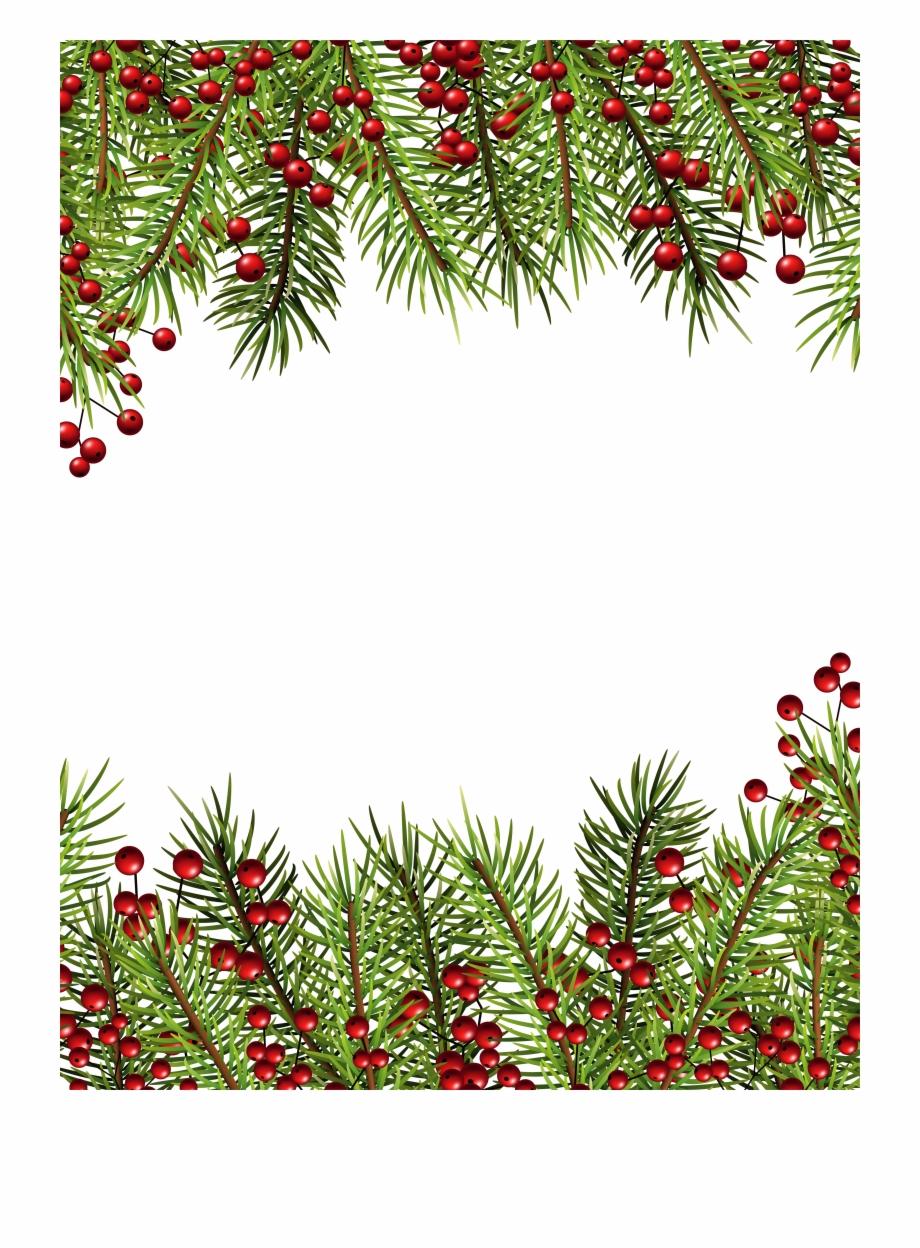 Christmas holly transparent.