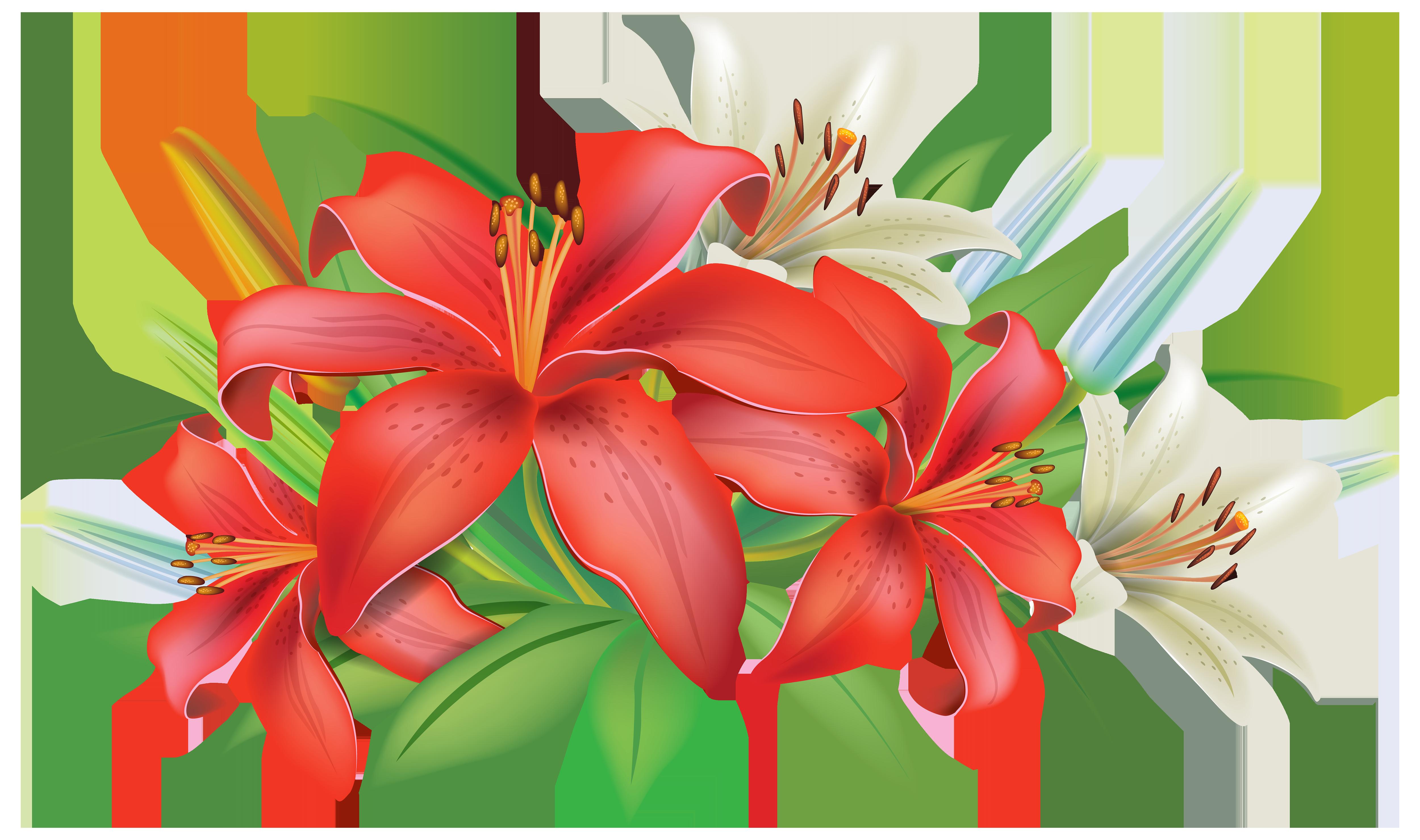 Pin by Adifa Kathy on Beautiful flowers