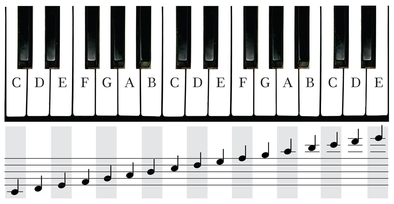 Free piano keyboard.