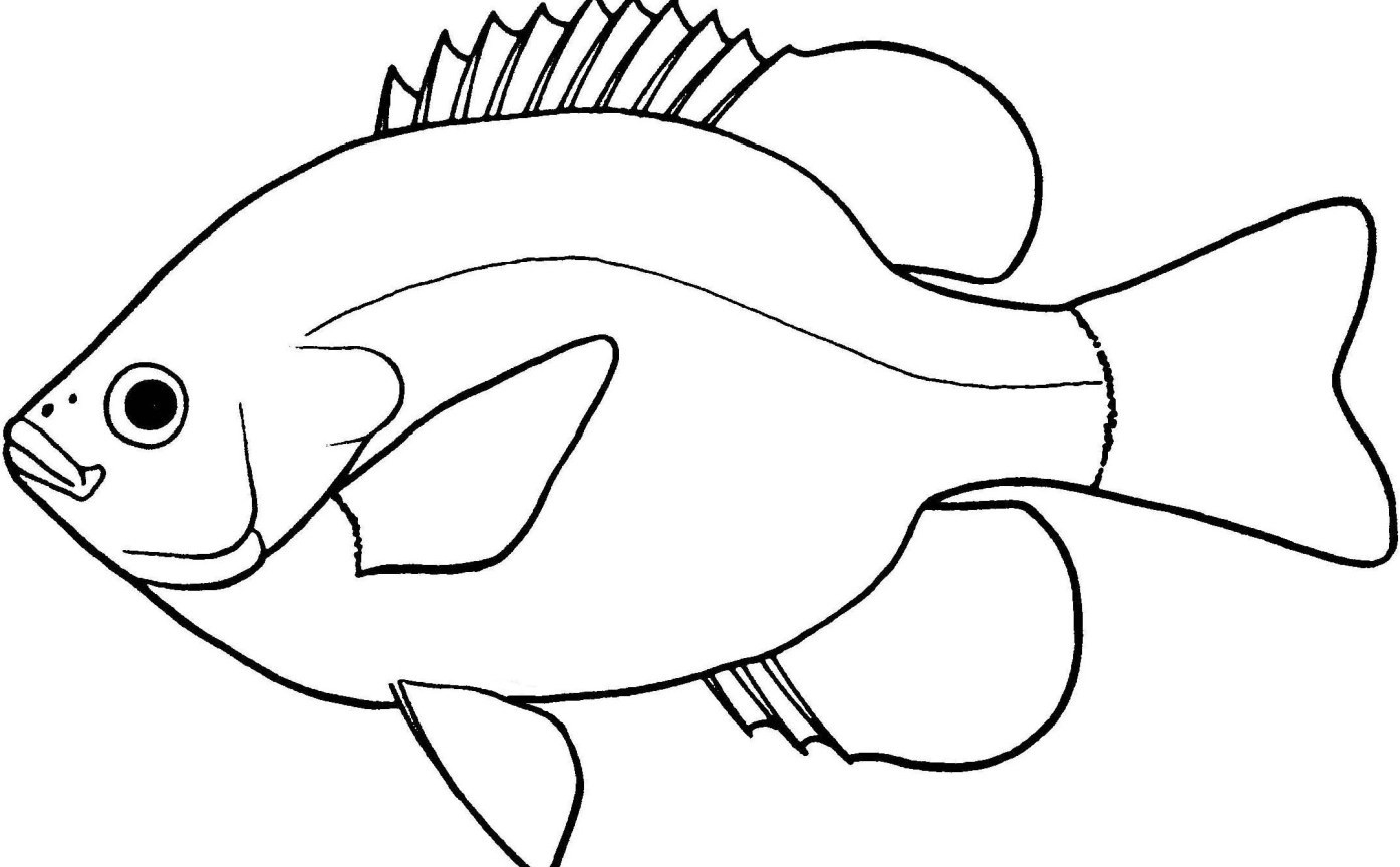Lovely fish clipart.