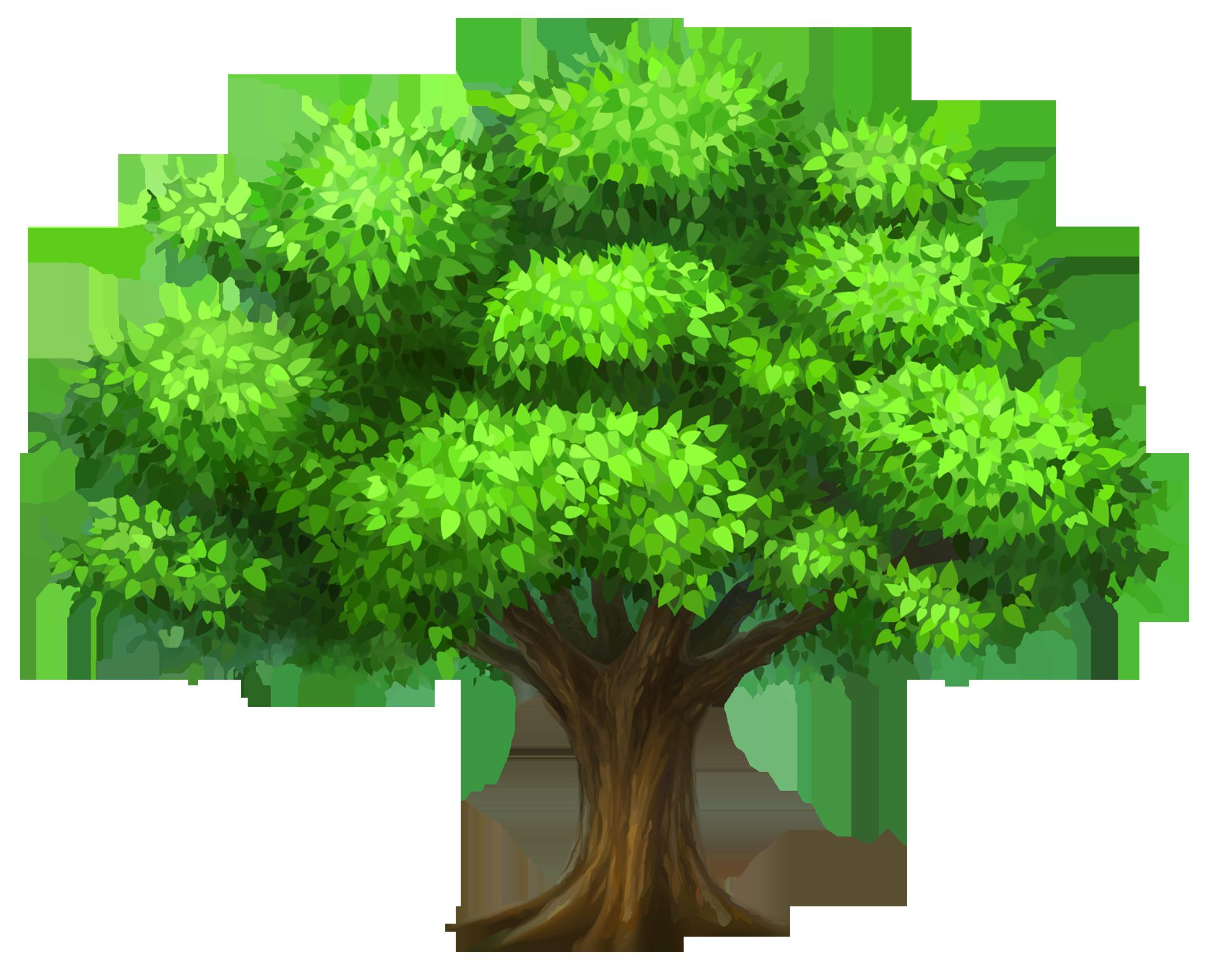 Tree hugger tree.