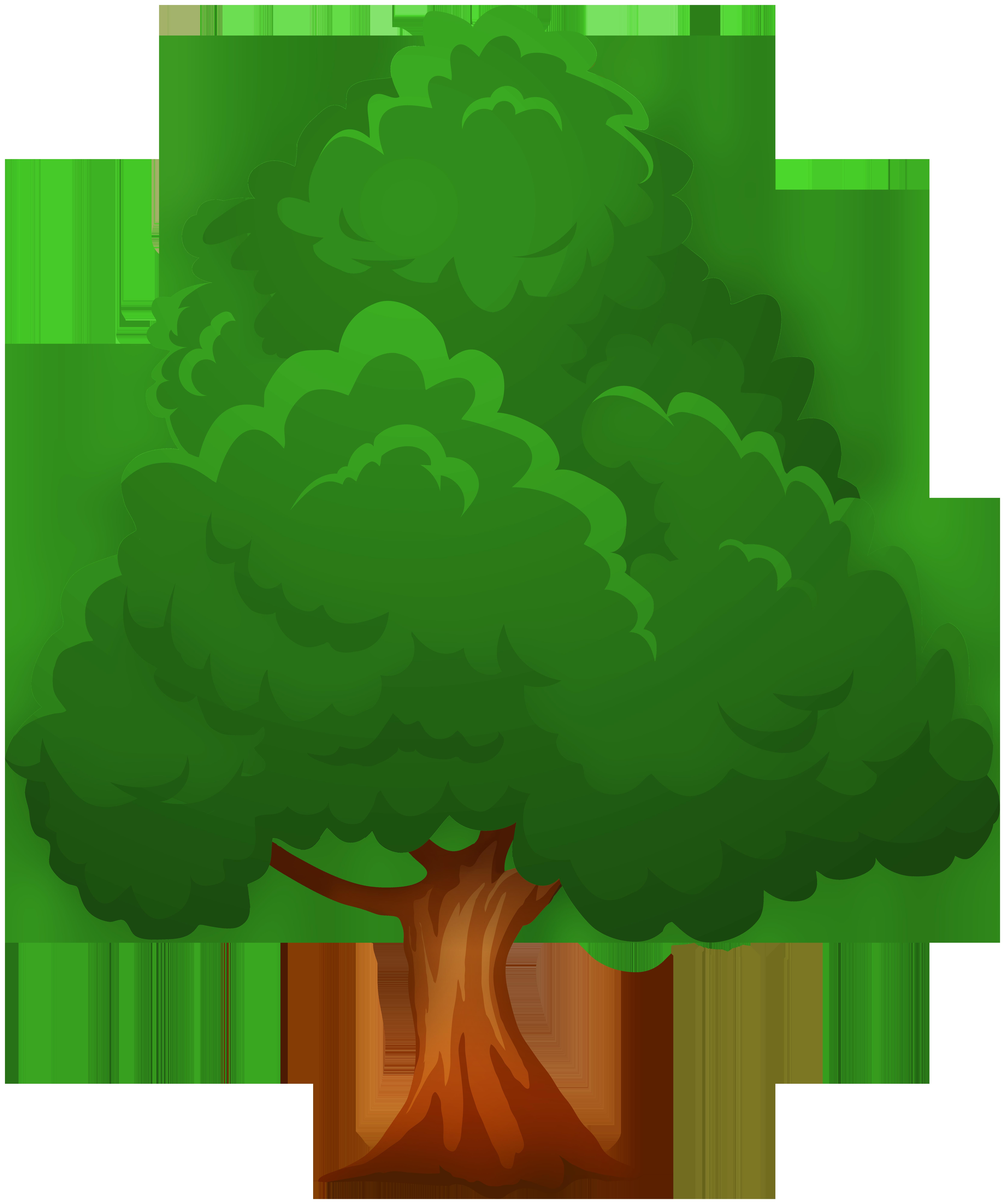 Big green tree.