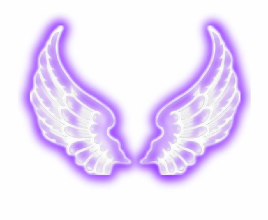 Angel wings purple.