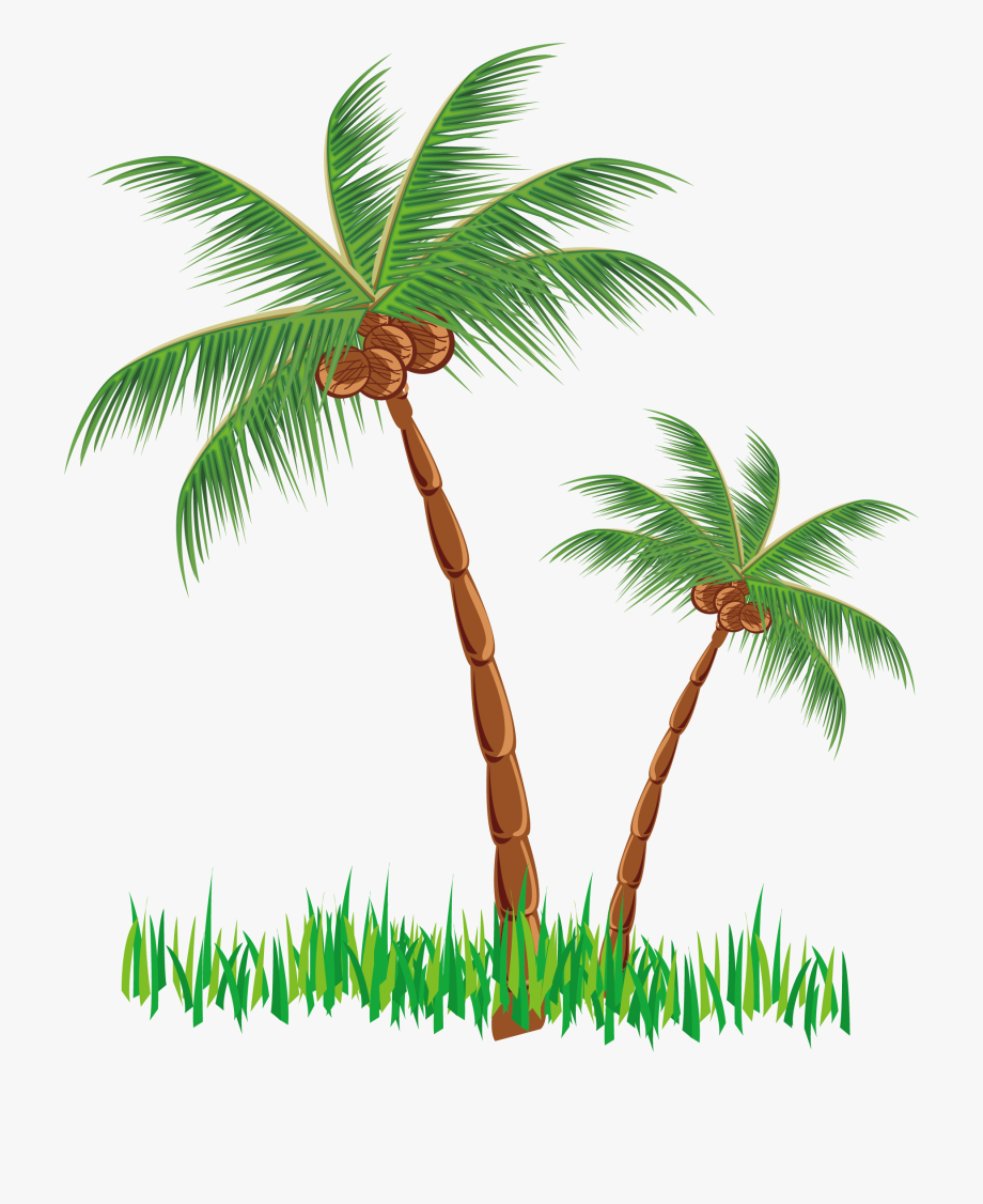 Coconut clipart watercolor pictures on Cliparts Pub 2020!