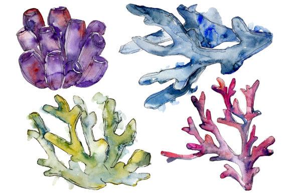 Corals Seascape Watercolor Png Clipart