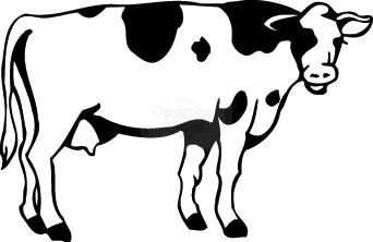 Cow Transparent Background