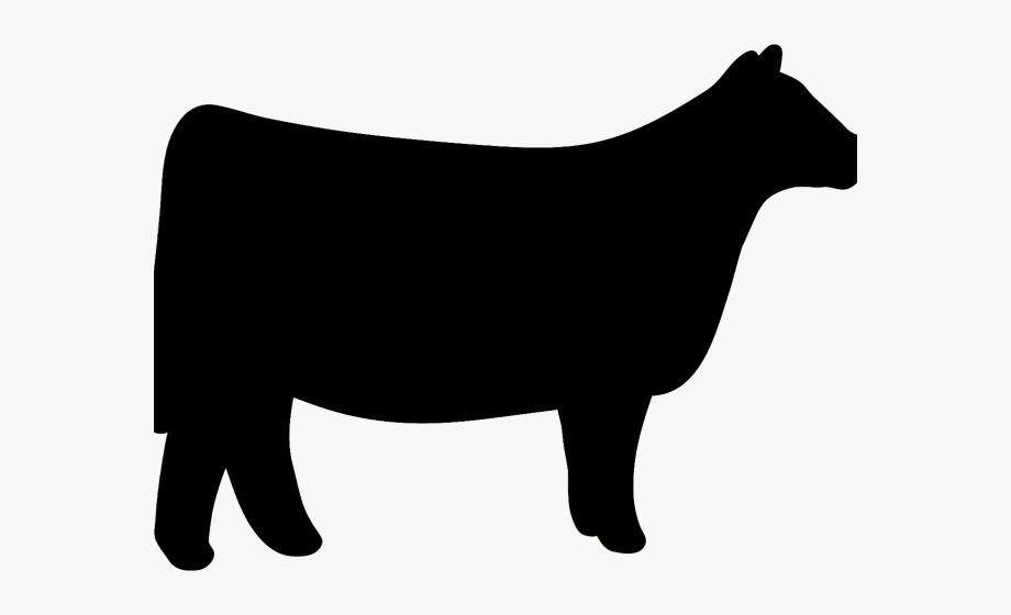 Cattle clipart heifer.