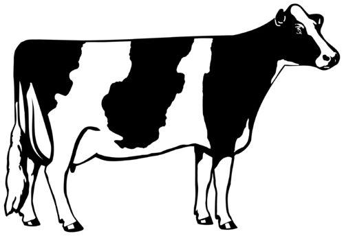 Cow outline clip.