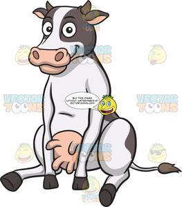 Happy sitting cow.