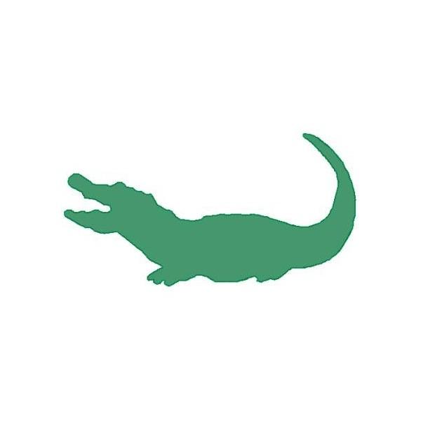 Cute Crocodile Pictures Image