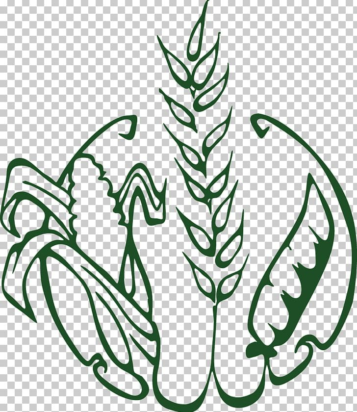 Crop Rotation Herbicide Agriculture Soybean PNG, Clipart