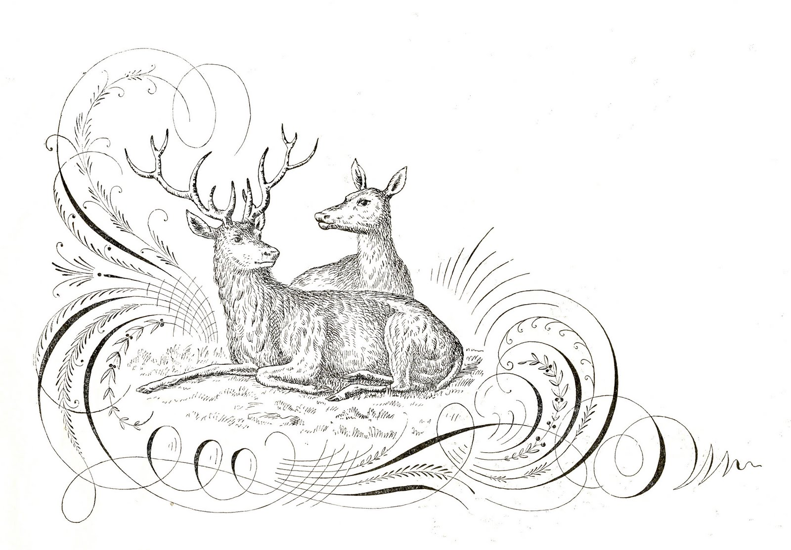 Free Antique Clip Art