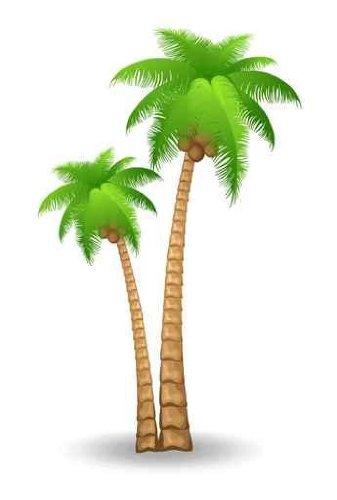 desert clipart palm tree