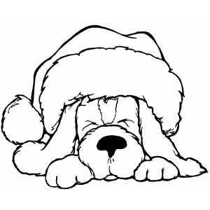 Christmas dog drawing.