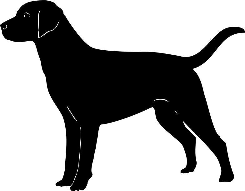 Labrador cliparts