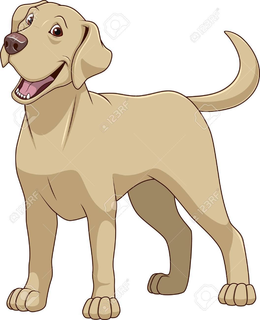 Labrador dog clipart