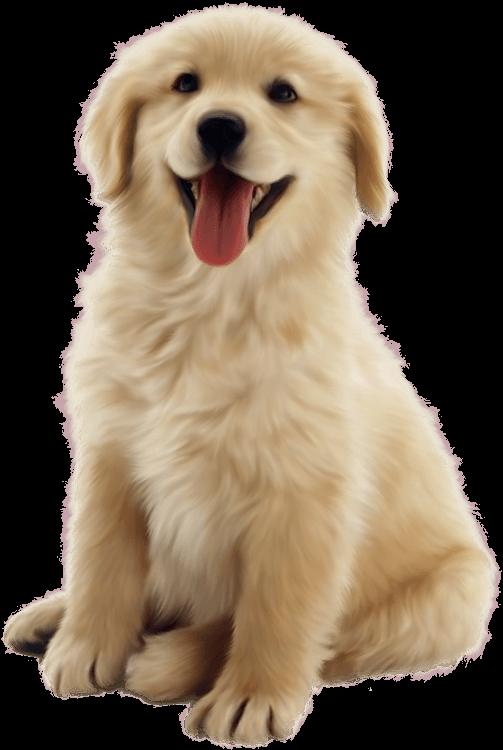 Real Dog Cliparts