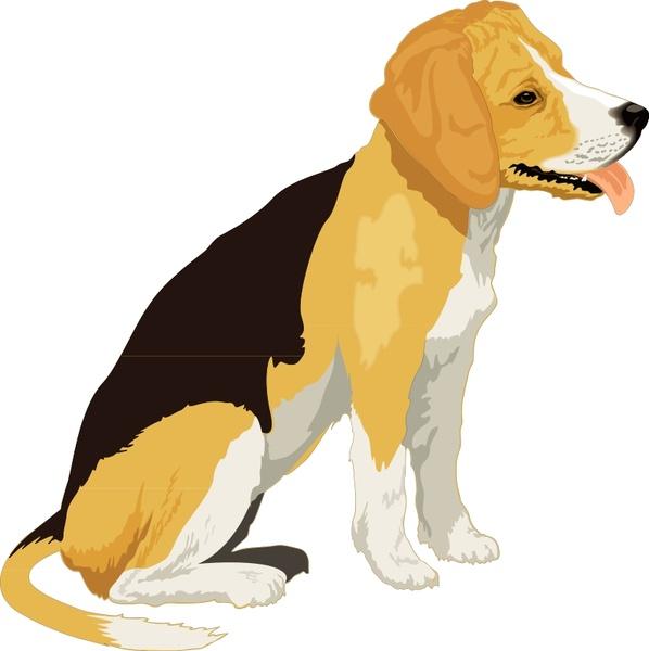 Beagle clipart realistic, Beagle realistic Transparent FREE