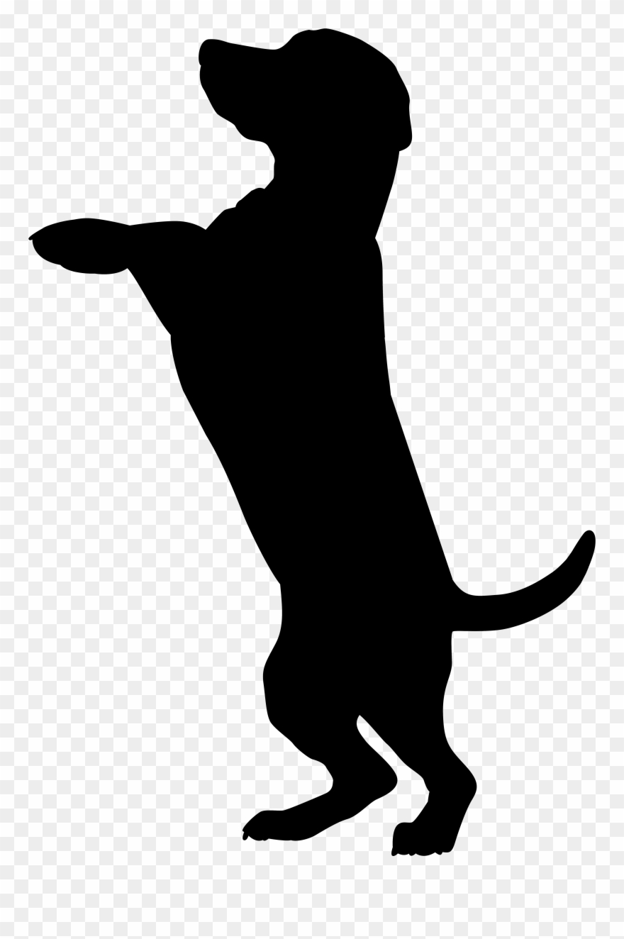 Chocolate Lab Silhouette At Getdrawings Com Free