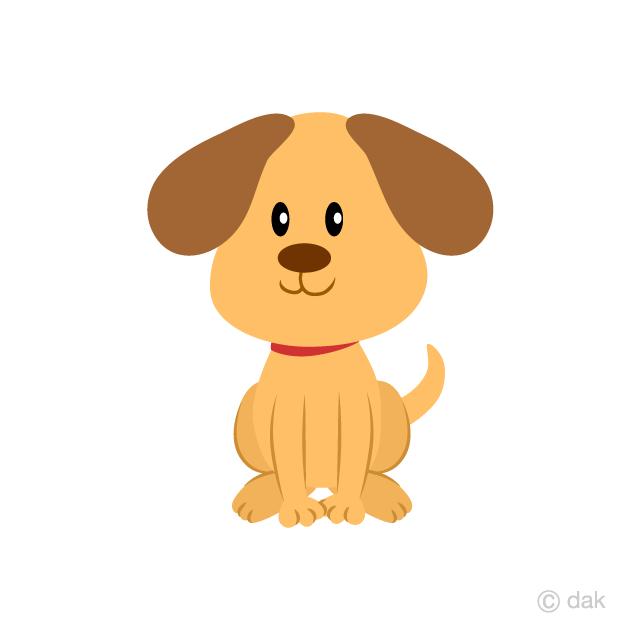 Free cute puppy.