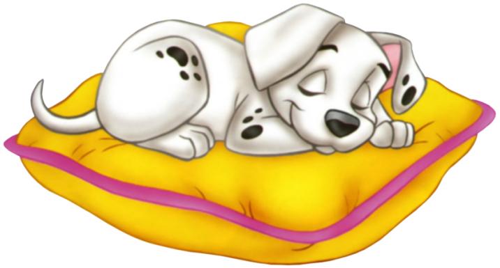 Free dog nap.