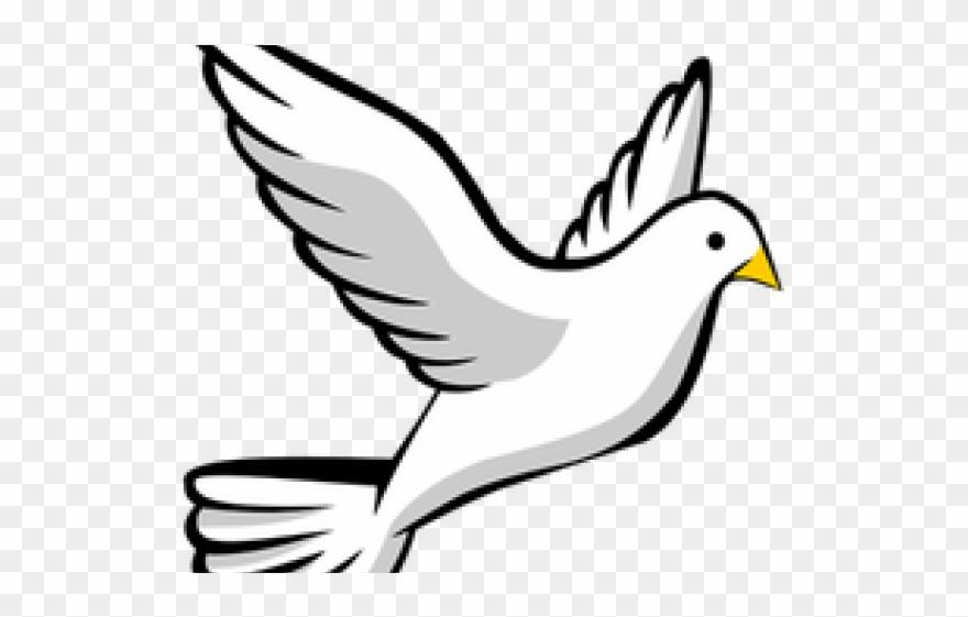 Peace Dove Clipart Catholic