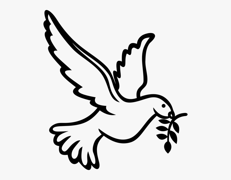 dove png clipart holy spirit