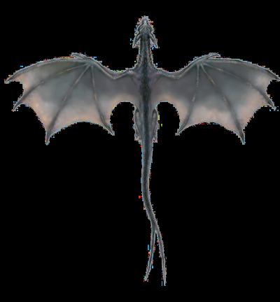Download dragon free.