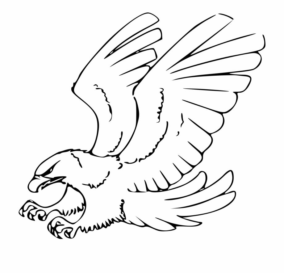 Eagle black and.