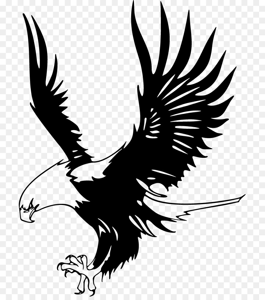Eagle clipart black and white cartoon pictures on Cliparts ...
