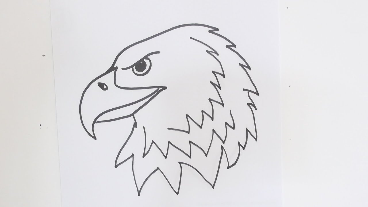 How draw eagles.