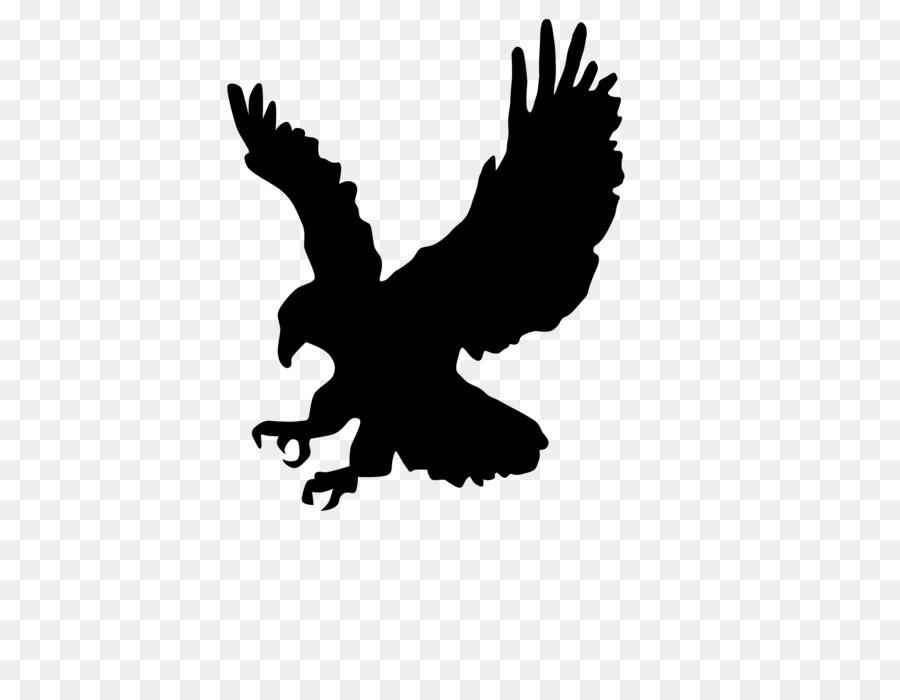 Eagle Cartoon clipart