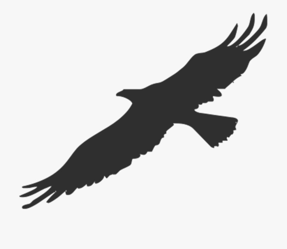 Golden eagle clipart.