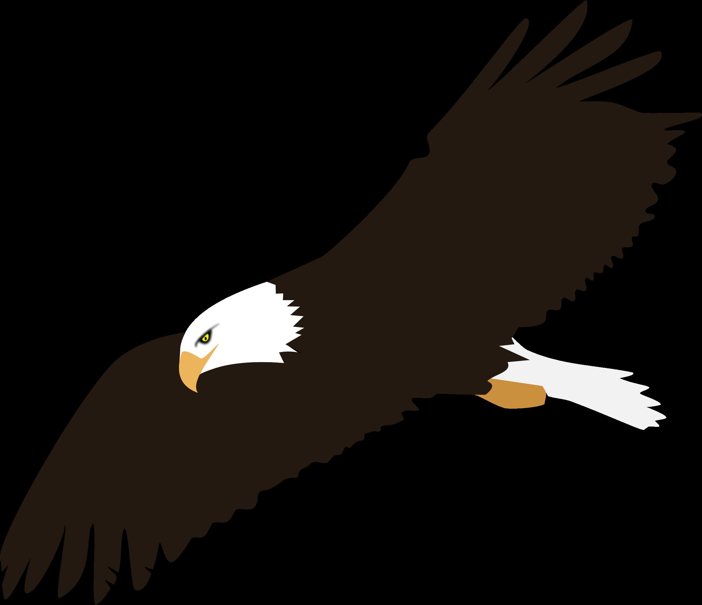 Free eagle cliparts.